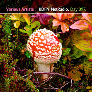 Day For Night.fm :: KDFN NetRadio [Day 097]