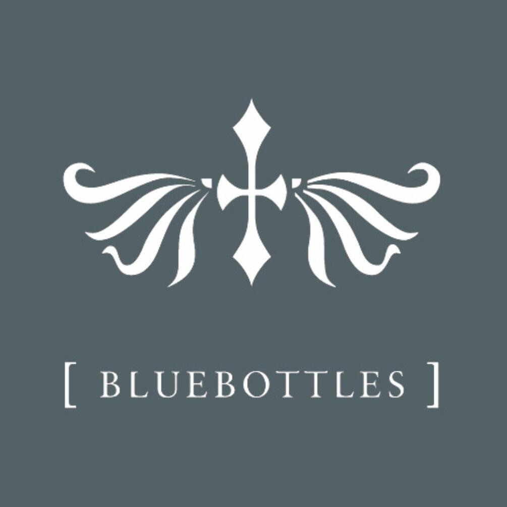 Bluebottles - aka Eric Scott of Day For Night