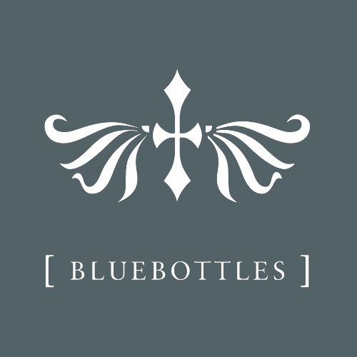 Bluebottles - aka Eric Scott of Day For Night