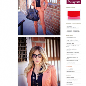 """Carpool, Couture & Cocktails"" Michelle Chiklis"