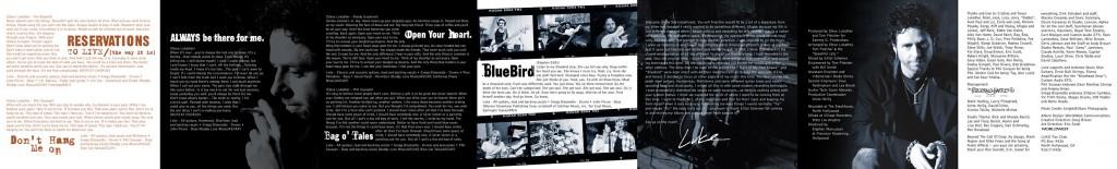 """Steve Lukather """"LUKE"""" back CD Booklet Panel - Design & Art Direction by Eric Scott (Day For Night)"""