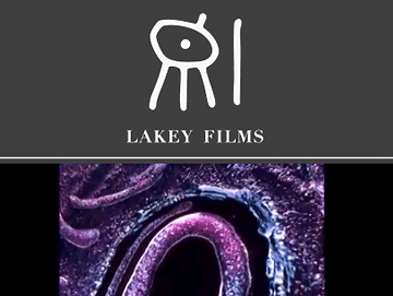 "Andy Lakey ""Films"" Custom Gallery Site"